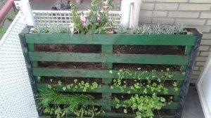 Een oude pallet omgetoverd tot verticale tuin